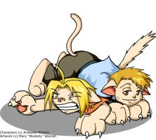 Wrestling Ed and Al Kittens by modesty