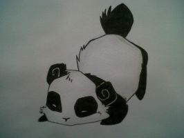 Anime panda by Tashalee96
