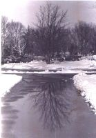 Snowy Day Reflections by Ashlee751