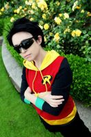 Damian Wayne: Elite Four Robin by VandorWolf