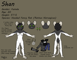 Ref Sheet - Shan (Big file) by Rattus-Shannica