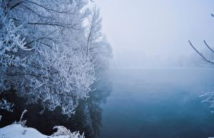 winter fog4 by Tumana-stock