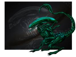 First Xenomorph by AvPLeague