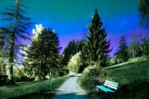 Park bench in moonshine by noitu-lover