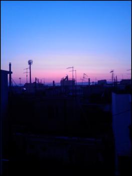 Beautiful Sunset by fr3quency