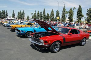 302 Boss Mustang 40TH Annivers by TheCarloos