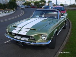 1967 Shelby GT-350 by The-Transport-Guild