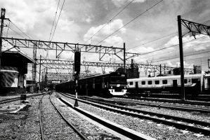 Train is Coming by vemano88