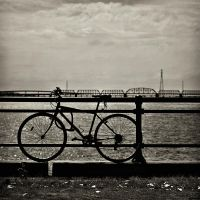 Bike in Head by Coffea