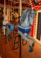 Great Plains Carousel 72 by Falln-Stock