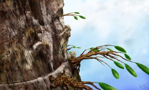 Cliff-Climber Trees by hwango