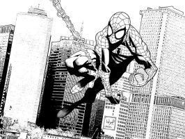 Spiderman by JoshTempleton