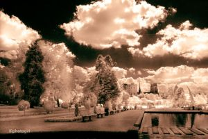 IR Eerie Garden VI -Sepia 950nm by IRphotogirl