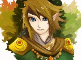 Link-Golden 'n Green Knight by Christy58ying