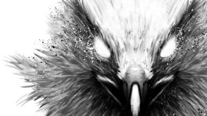 The Hawk Wallpaper 1366x768 by FuShan
