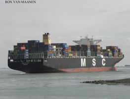 Norwegian container ship MSC Altair 2012- by roodbaard1958