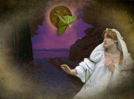 Night of the Luna Moth by 3punkins