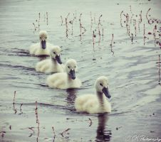 Four in a row by Claudy1996