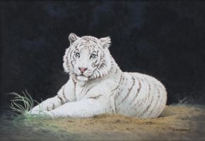 White Tiger by CitizenOlek