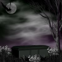 Background casket 2 by Twins72