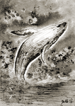 Inktober #27 | Whale | ACEO by silverybeast