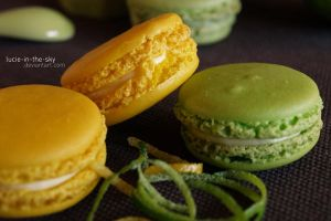 macarons II by lucie-in-the-sKy