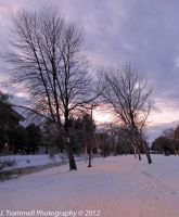 Out for a Cold Walk by JLAT1990