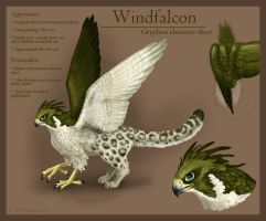 Windfalcon Gryphon Ref Sheet by windfalcon