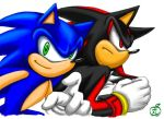 My fav duo1: sonic and shadow by maruringo