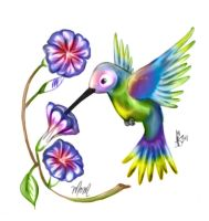 humming bird and morning glory by thetepster