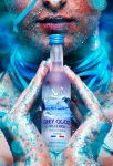 Grey Goose by IMustBeDead