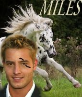 Miles Ireland by spottedparr
