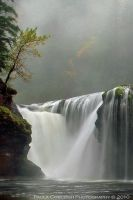 Waterfall - Lower Lewis Falls - Autumn Fog by La-Vita-a-Bella