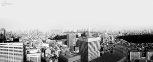 Roofs of Tokyo by aninyosaloh