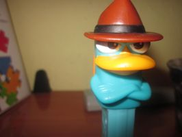 Perry. by xCOLOURz