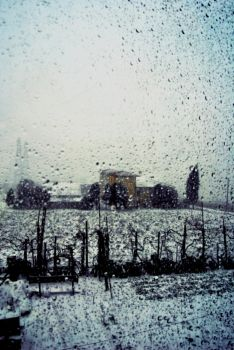 Snow from the window. by PsychedelicEyes