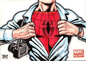 MARVEL NOW! - SPIDERMAN by JASONS21