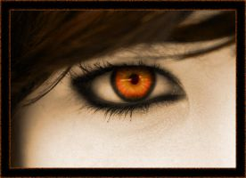 Orange Eye by starlight879