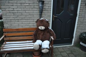 Poor Teddy.. by Zavitala