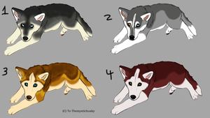 Siberian husky adopts (CLOSED) by Themystichusky