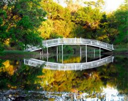 Bridge at Blisswood by rvotaw