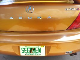 Sexy License Plate on Sexy Car by SEGAMew