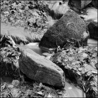 Buttermilk Falls in B and W by IgorLaptev