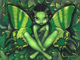 Green Butterfly Fantasy by jasminetoad