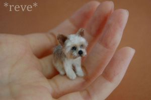 Miniature Yorkshire Terrier *Handmade Sculpture* by ReveMiniatures