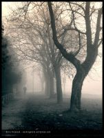 Fogged city by Ph1at1ine