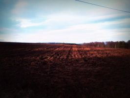 Field during the Winter by TomSimpson96