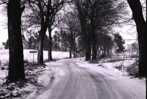 Winter Road 220254 by StockProject1