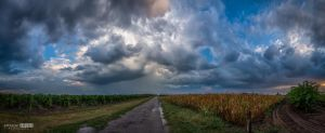 The end of summer by NorbertKocsis