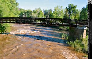 Bridge Across Animas River by DamselStock